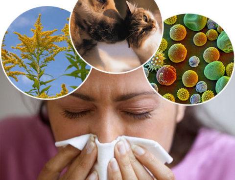 alergotestovi