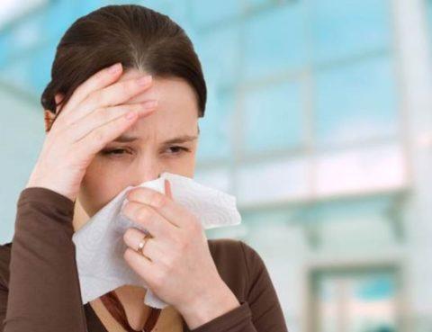 Alergije-FreshPress-696x414