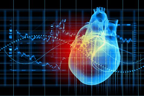 srčani mišić